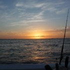 Fishing in Cape Coral, Florida Part 1